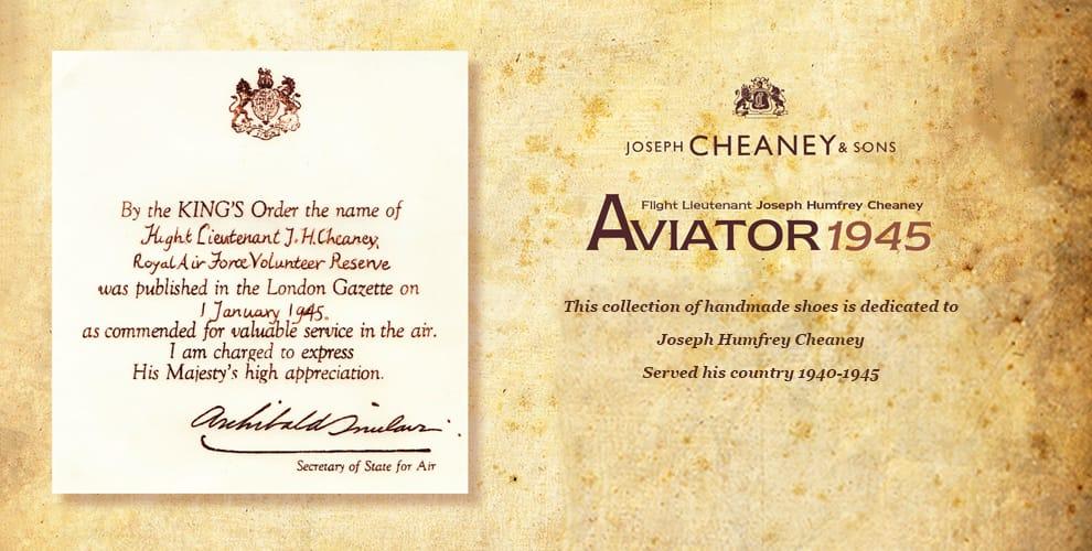 Aviator Homepage Banner 4