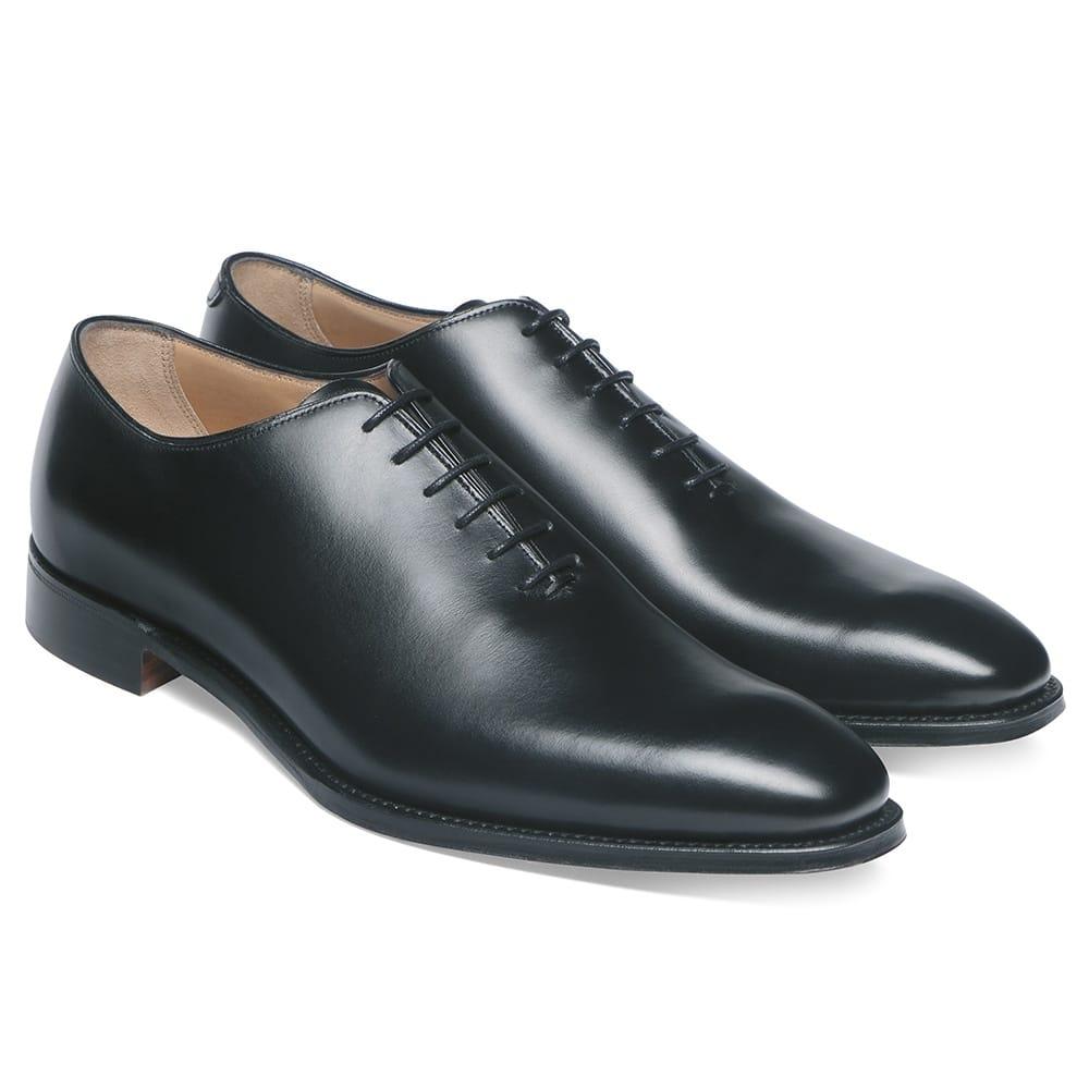 Amazing Mens Travel Shoes
